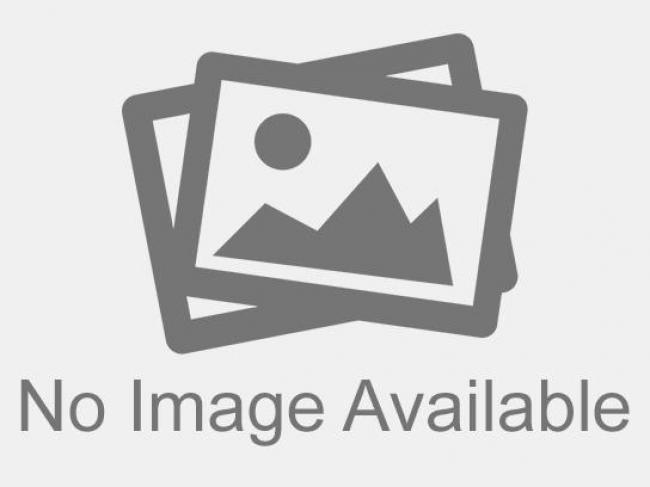 AMERYKA ΠΙΑΤΑΚΙ FLAVOURS 3642 / 16.5 εκ